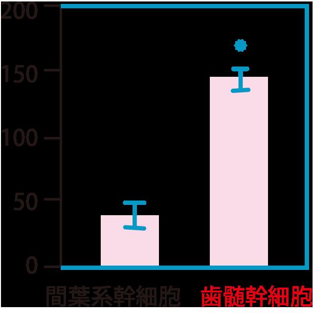 分裂の限界回数